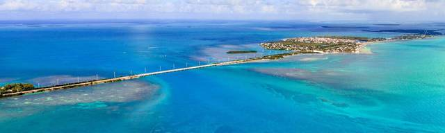 1 Transferable Rogo Exemption, Other, FL 33040 (MLS #597837) :: Key West Vacation Properties & Realty