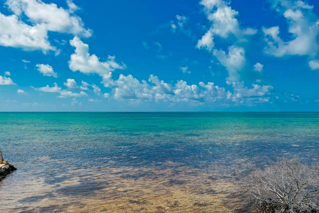 75465 Overseas Highway, Lower Matecumbe, FL 33036 (MLS #597841) :: Key West Luxury Real Estate Inc