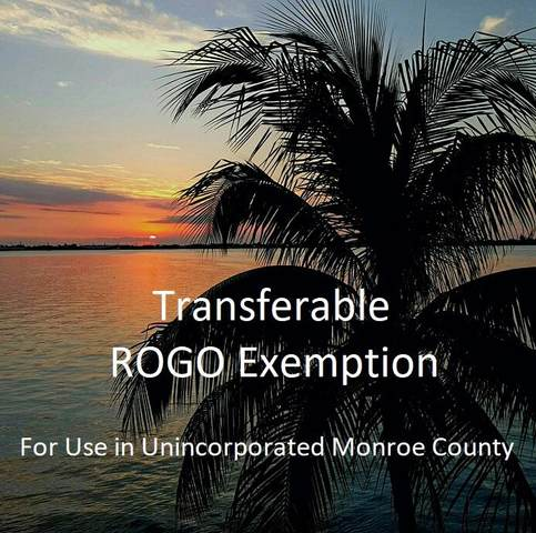 Transferable Rogo Exemption, Big Pine Key, FL 33043 (MLS #597843) :: Keys Island Team