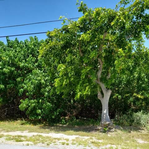 195 S Indies Drive, Duck Key, FL 33050 (MLS #597906) :: KeyIsle Group