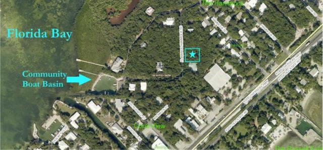 19 Flamingo Hammock Road, Upper Matecumbe Key Islamorada, FL 33036 (MLS #577558) :: KeyIsle Realty
