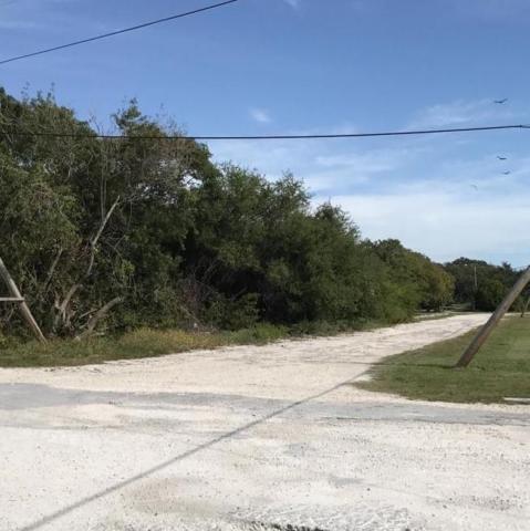US1 Dorsett Drive, Marathon, FL 33050 (MLS #578140) :: Doug Mayberry Real Estate