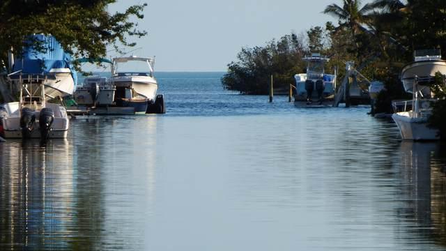 91 Sawyer Drive, Cudjoe Key, FL 33042 (MLS #579396) :: Jimmy Lane Home Team