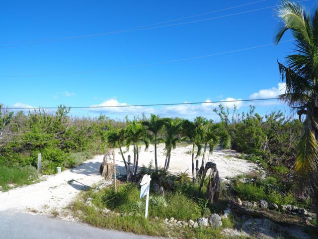 25074 45Th Street, Summerland Key, FL 33042 (MLS #580509) :: Jimmy Lane Real Estate Team
