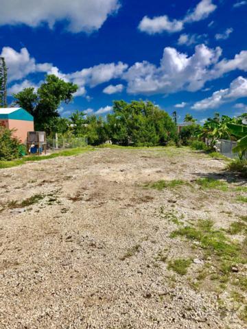 27935 Tarpon Terrace, Summerland Key, FL 33042 (MLS #581517) :: Jimmy Lane Home Team
