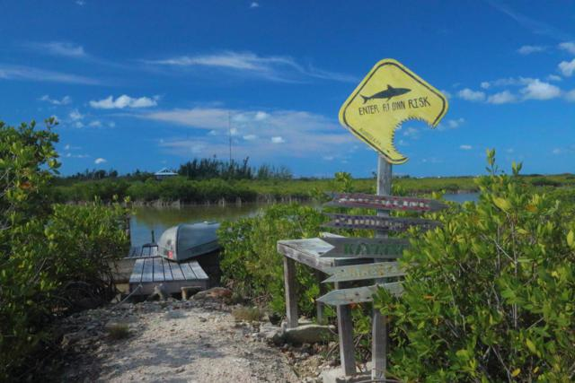 19052 Mad Bob Road, Sugarloaf Key, FL 33042 (MLS #585339) :: Jimmy Lane Real Estate Team