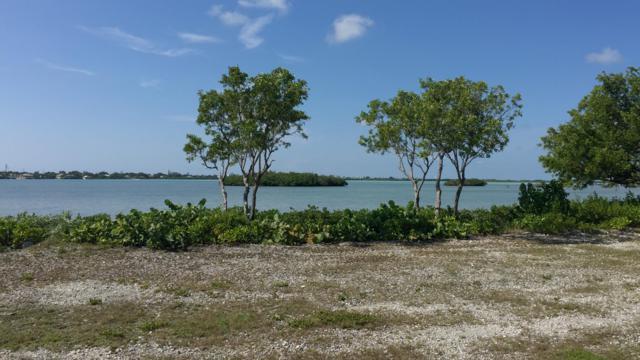 62 Cannon Royal Drive, Shark Key, FL 33040 (MLS #585943) :: Coastal Collection Real Estate Inc.