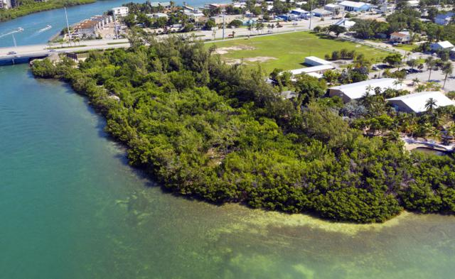 11901 Overseas Highway, Marathon, FL 33050 (MLS #586629) :: Jimmy Lane Home Team