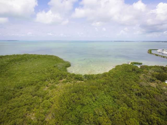 86600 Overseas Highway, Plantation Key, FL 33036 (MLS #587112) :: Key West Luxury Real Estate Inc
