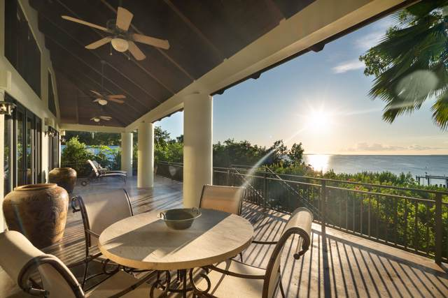 130 Gumbo Limbo Lane, Plantation Key, FL 33070 (MLS #588266) :: Jimmy Lane Home Team