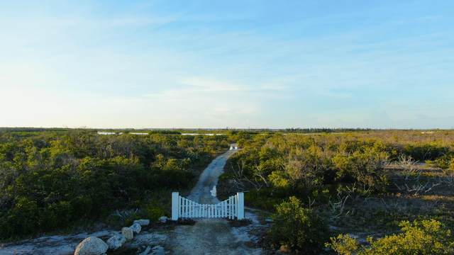 31549 Old State Road, No Name Key, FL 33043 (MLS #589962) :: Key West Luxury Real Estate Inc