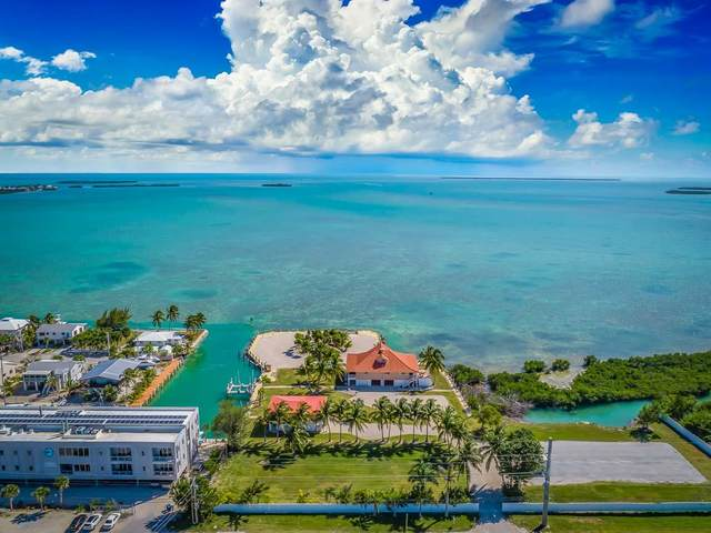 24200 Overseas Highway, Summerland Key, FL 33042 (MLS #590025) :: Born to Sell the Keys