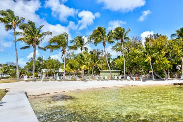 47 SE Marlin Avenue, Key Largo, FL 33037 (MLS #590354) :: Born to Sell the Keys
