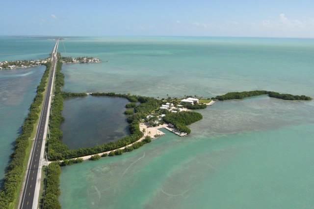 62250 Overseas Highway 1-3, Conch Key, FL 33050 (MLS #590627) :: Key West Luxury Real Estate Inc
