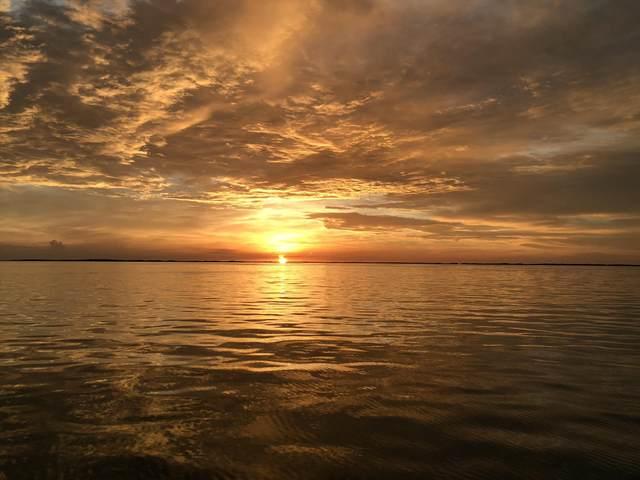 45 Cormorant Drive, Key Largo, FL 33037 (MLS #591063) :: Jimmy Lane Home Team