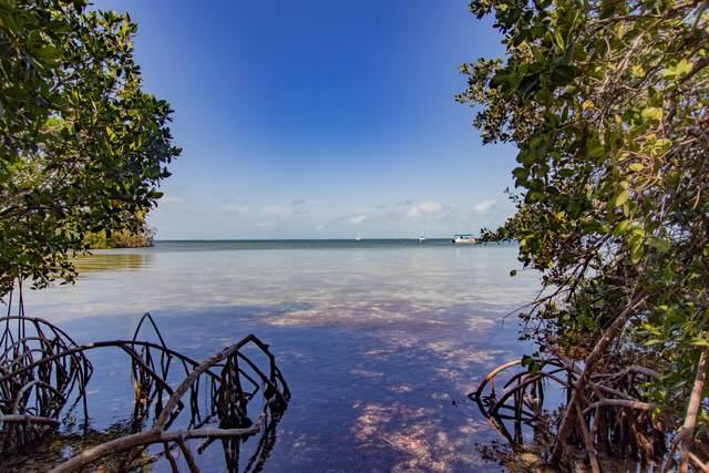 86600 Overseas Highway, Plantation Key, FL 33036 (MLS #594650) :: Jimmy Lane Home Team