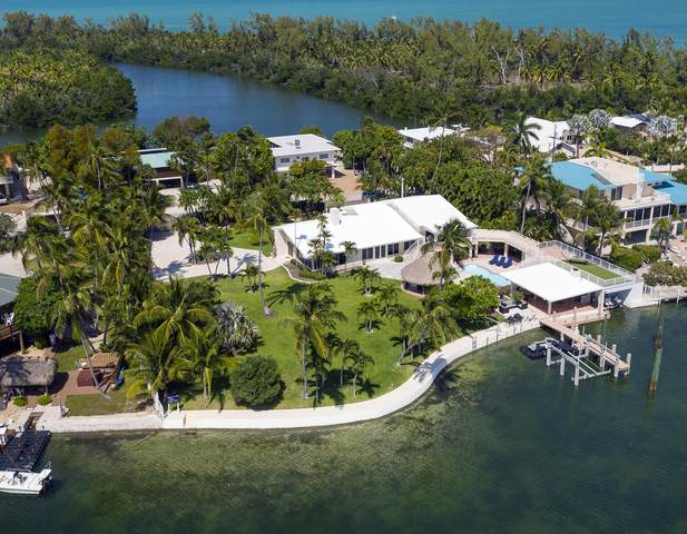 127 Sapodilla Drive, Lower Matecumbe, FL 33036 (MLS #594881) :: Key West Luxury Real Estate Inc