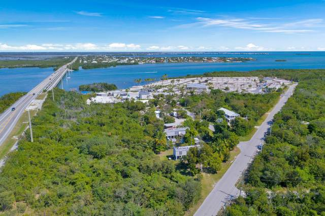 91 State Road 939, Sugarloaf Key, FL 33042 (MLS #595079) :: Coastal Collection Real Estate Inc.