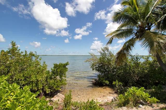 Lot 1 Lesrohde, Ramrod Key, FL 33042 (MLS #597387) :: The Mullins Team