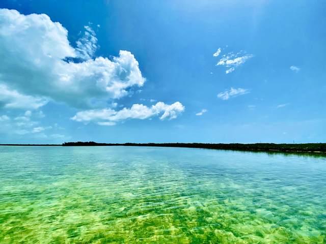 Vacant Land Saddlebunch, Saddlebunch, FL 33040 (MLS #597507) :: Keys Island Team