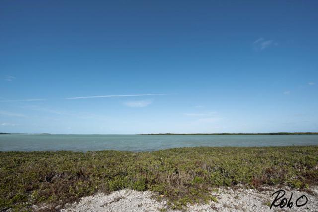 67 Cannon Royal Drive, Shark Key, FL 33040 (MLS #574515) :: The Coastal Collection Real Estate Inc.