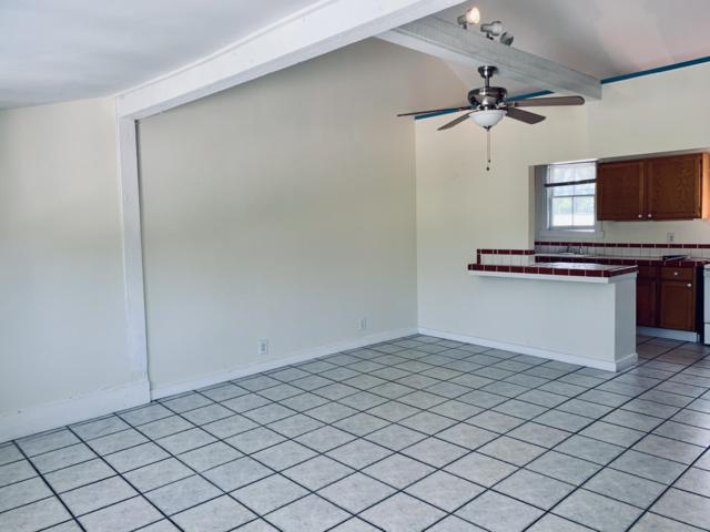 1401 Newton Street #4, Key West, FL 33040 (MLS #584331) :: Jimmy Lane Real Estate Team