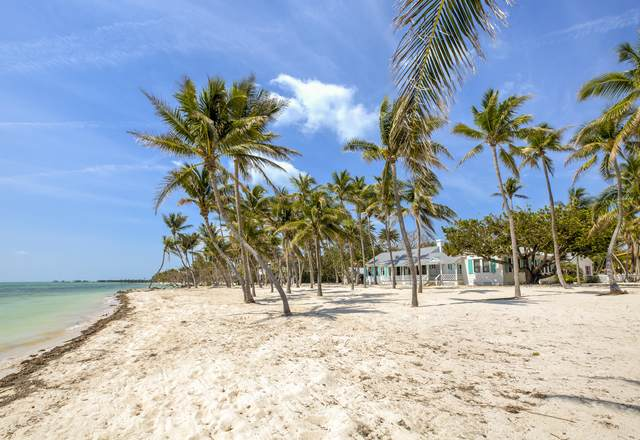 200 Atlantic Street, Upper Matecumbe Key Islamorada, FL 33036 (MLS #589035) :: KeyIsle Realty
