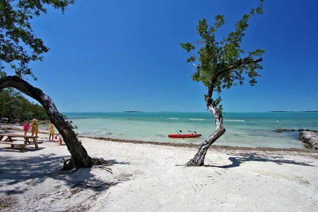 96000 Overseas Highway T4, Key Largo, FL 33037 (MLS #589582) :: Born to Sell the Keys