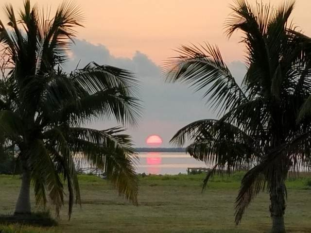 30454 Pine Way, Big Pine Key, FL 33043 (MLS #589781) :: Brenda Donnelly Group