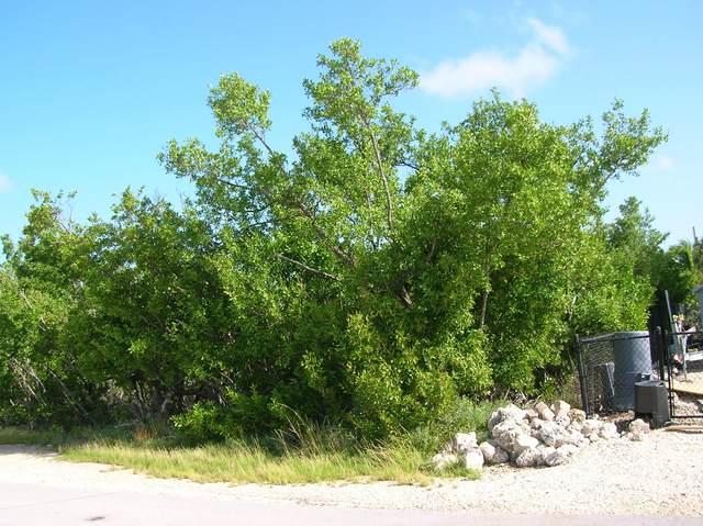 Lot 11 Guadaloupe Lane, Ramrod Key, FL 33042 (MLS #591896) :: Jimmy Lane Home Team