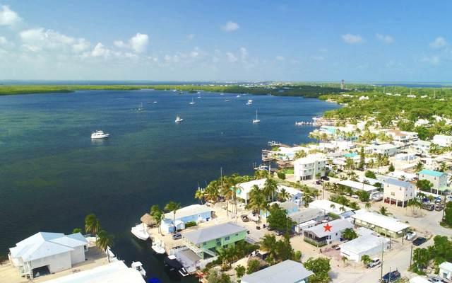 73 Ibis Lane, Key Largo, FL 33037 (MLS #595917) :: Jimmy Lane Home Team