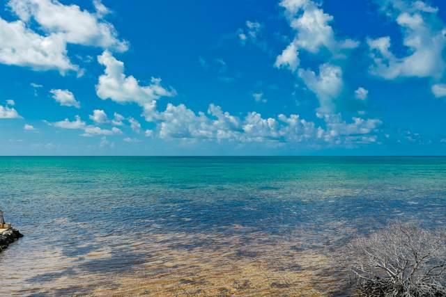 75465 Overseas Highway, Lower Matecumbe, FL 33036 (MLS #597822) :: Key West Luxury Real Estate Inc
