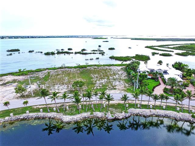 62 Cannon Royal Drive, Shark Key, FL 33040 (MLS #585943) :: Key West Luxury Real Estate Inc