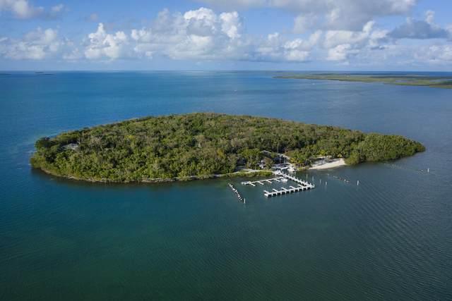 10 Cannon Point, Key Largo, FL 33037 (MLS #568695) :: Jimmy Lane Home Team