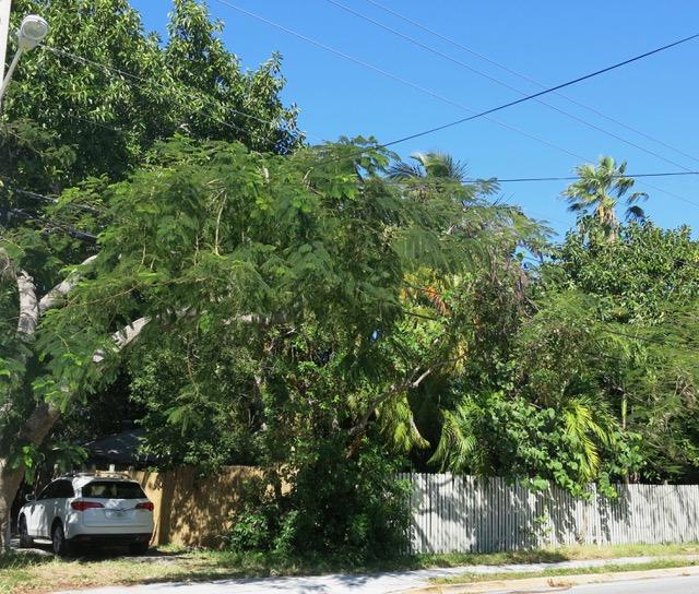 1713 Flagler Avenue, Key West, FL 33040 (MLS #578181) :: Doug Mayberry Real Estate