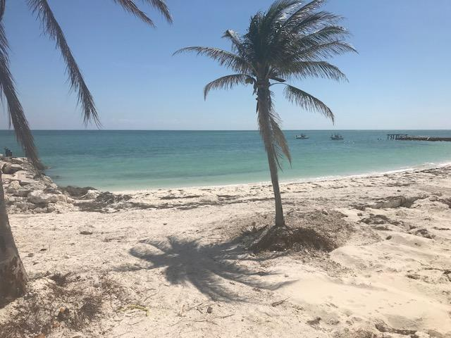 501 E Ocean Drive #25, Key Colony, FL 33051 (MLS #579440) :: KeyIsle Realty
