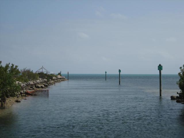 1550 Ocean Bay Drive - Photo 1