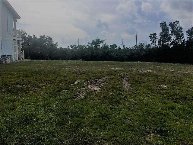 8 Blue Water Drive, Saddlebunch, FL 33040 (MLS #581535) :: Coastal Collection Real Estate Inc.