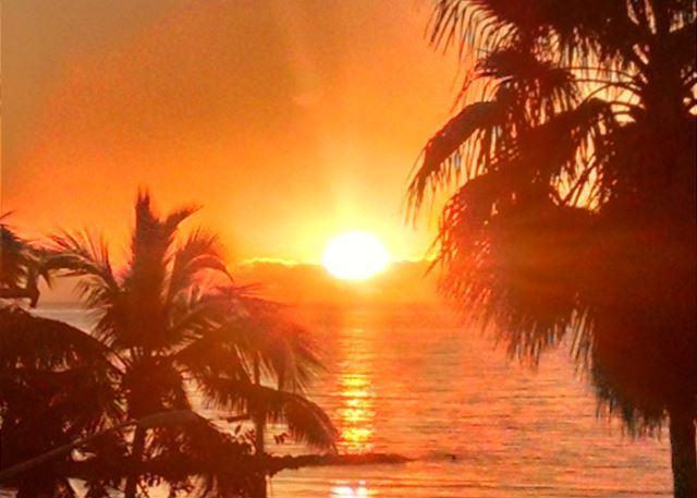 1800 Atlantic Boulevard C337, Key West, FL 33040 (MLS #582672) :: Conch Realty