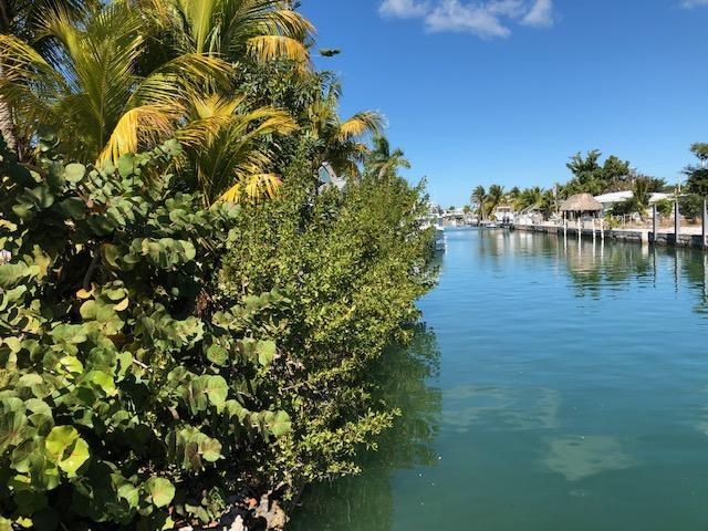 909 E Caribbean Drive, Summerland Key, FL 33042 (MLS #584257) :: Key West Luxury Real Estate Inc