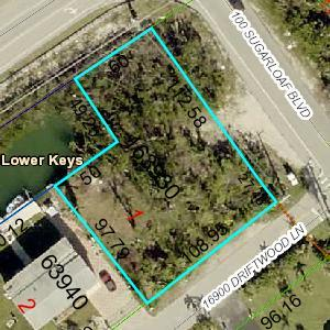 16961 Driftwood, Sugarloaf Key, FL 33042 (MLS #585999) :: Jimmy Lane Real Estate Team