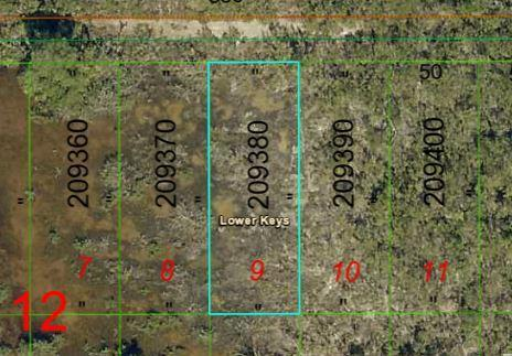 Vacant Alley, Ramrod Key, FL 33042 (MLS #586173) :: Jimmy Lane Real Estate Team