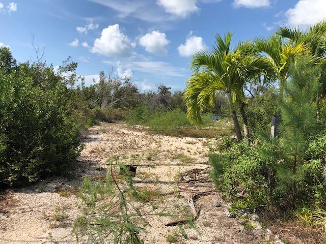 25044 45Th Street, Summerland Key, FL 33042 (MLS #586310) :: Coastal Collection Real Estate Inc.
