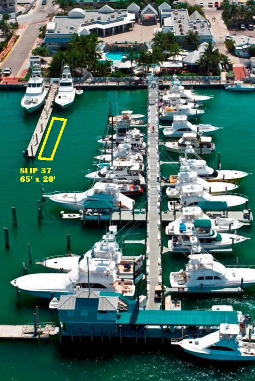951 Caroline Street #37, Key West, FL 33040 (MLS #586611) :: Key West Luxury Real Estate Inc