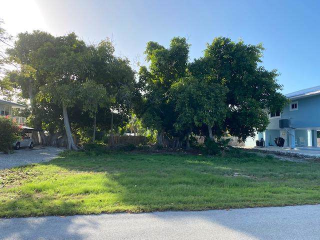 212 Schooner Lane, Duck Key, FL 33050 (MLS #589122) :: Coastal Collection Real Estate Inc.