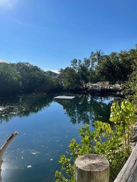 1500 Ocean Bay Drive D2, Key Largo, FL 33037 (MLS #594301) :: Key West Vacation Properties & Realty