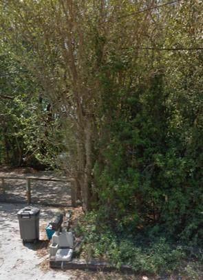 157 Florida Avenue, Key Largo, FL 33070 (MLS #595238) :: Jimmy Lane Home Team