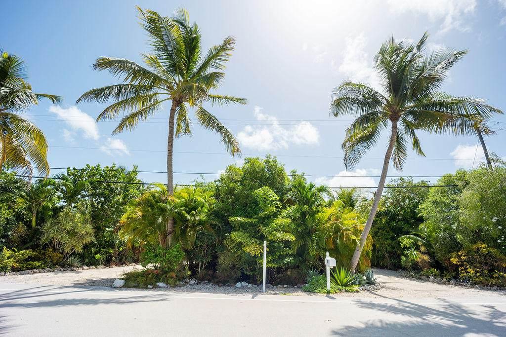 81 Coral Avenue - Photo 1