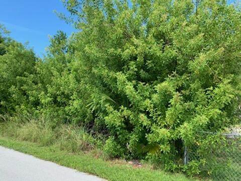 33 Canal Drive, Sugarloaf Key, FL 33042 (MLS #598201) :: Jimmy Lane Home Team