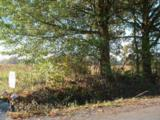 00 Morton Bend Road - Photo 11